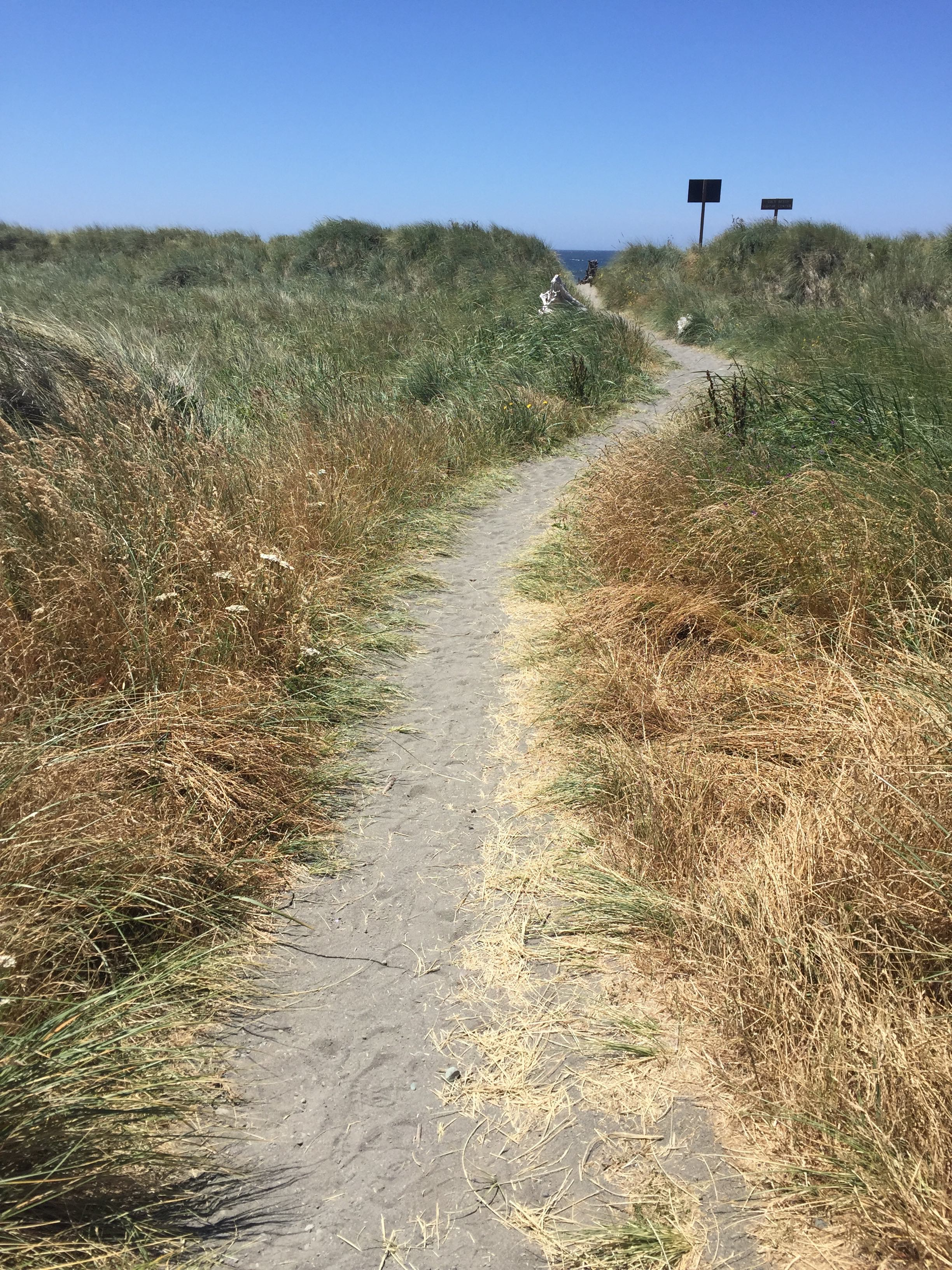 path to gold beach