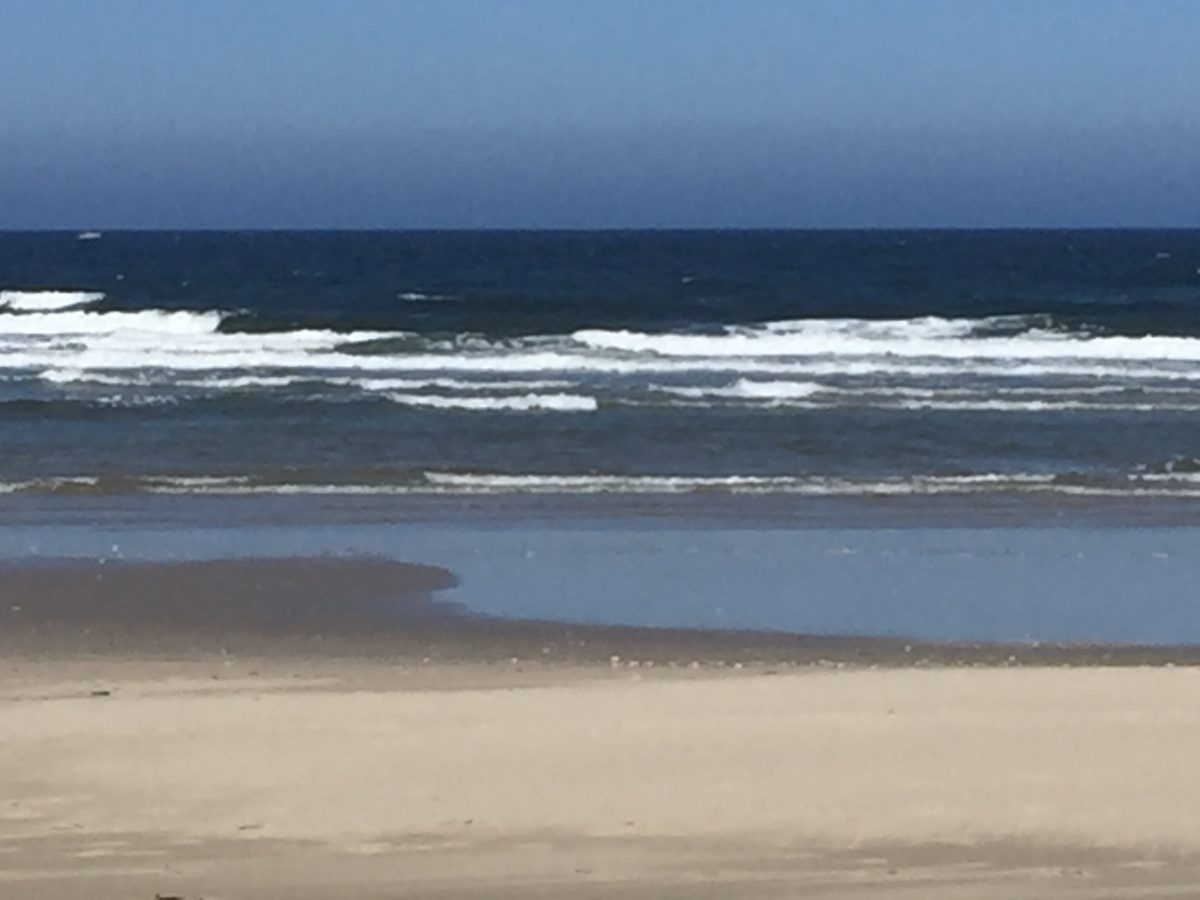 sand and surf at heceta beach